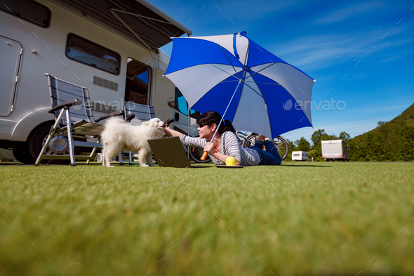 Woman on the grass with a dog looking at a laptop - Stock Photo - Images