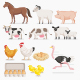 Farm Animal Set - GraphicRiver Item for Sale