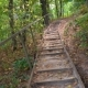Wooden Staircase in the Forest - VideoHive Item for Sale