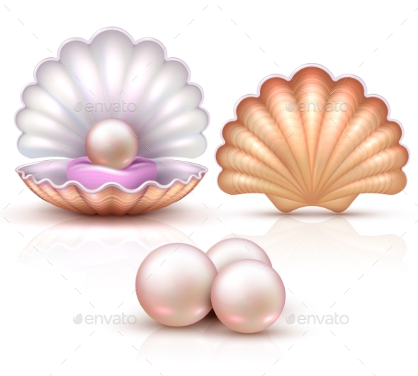 Opened and Closed Seashells with Pearls Isolated - Organic Objects Objects
