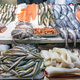 Fresh fish and seafood at the Mercado Central in Santiago - PhotoDune Item for Sale