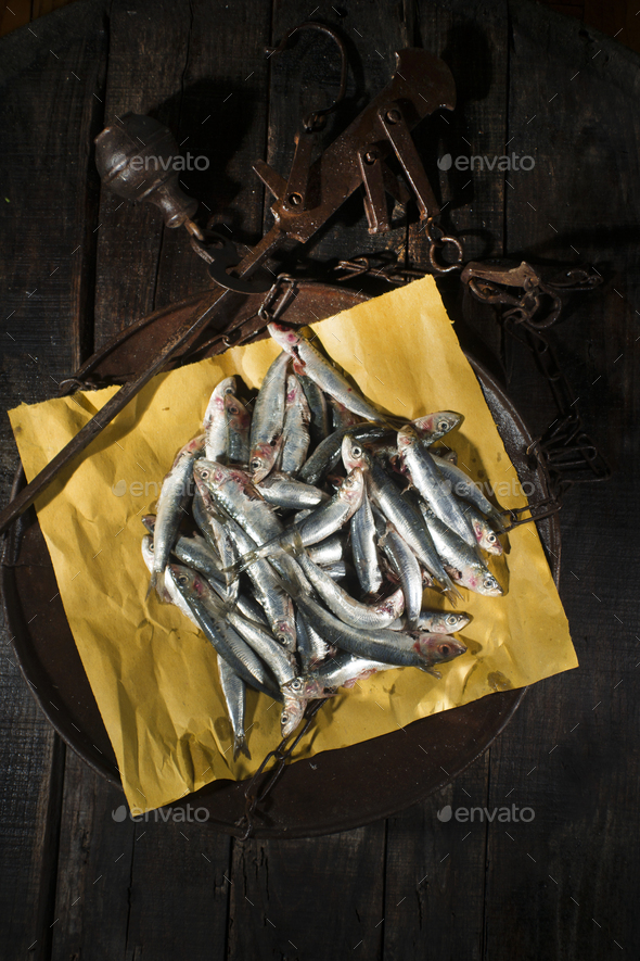 Raw anchovies in a flat scale - Stock Photo - Images