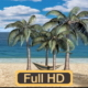 Sunny Day Palm Trees On The Beach - VideoHive Item for Sale