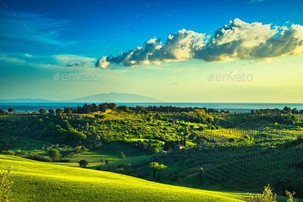 Maremma countryside, sunset landscape. Elba island on horizon. T - Stock Photo - Images
