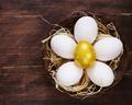 Golden Egg - PhotoDune Item for Sale