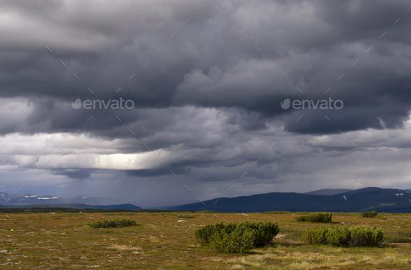 Flatruet mountain plateau - Stock Photo - Images
