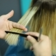 Hair Dye Cutting in Process - VideoHive Item for Sale