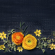 Yellow ranunculus on black background - PhotoDune Item for Sale