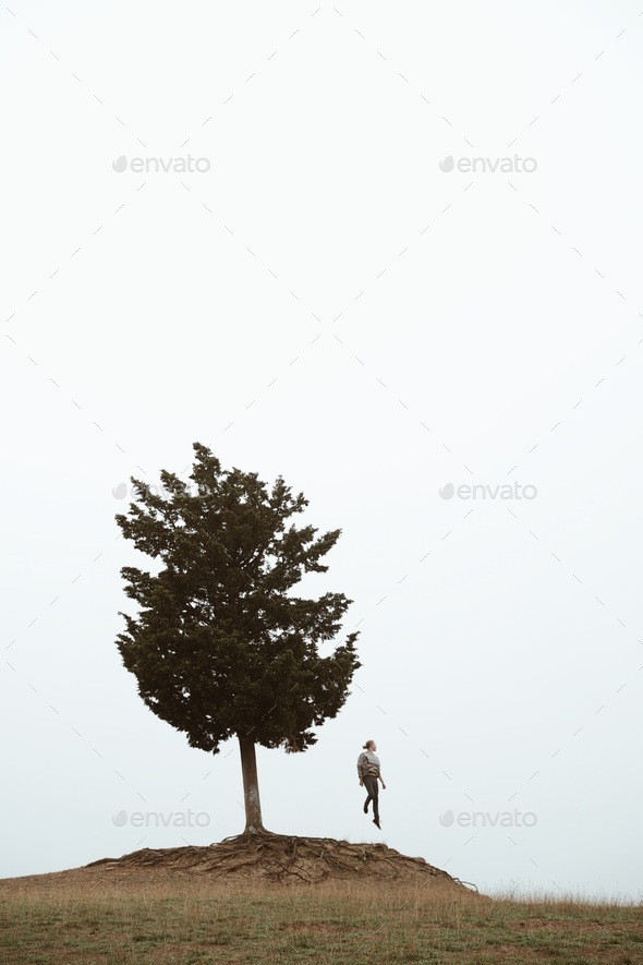 Dance with trees - Stock Photo - Images