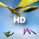Flying Butterflies - VideoHive Item for Sale