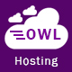 Owl Hosting - Responsive HTML5 Hosting Template - ThemeForest Item for Sale