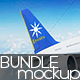 Airplane  Mockup - Bundle