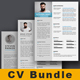 Resume Word Bundle