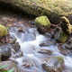 Water Flows Down Mossy Brook Wild Forest Stream Waterfall - PhotoDune Item for Sale