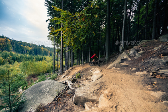 Mountain biker riding cycling in autumn forest - Stock Photo - Images