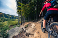 Mountain biker riding cycling in autumn forest - PhotoDune Item for Sale