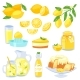 Lemon Food Vector
