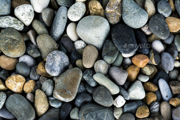 The pebbles on the beach - Stock Photo - Images