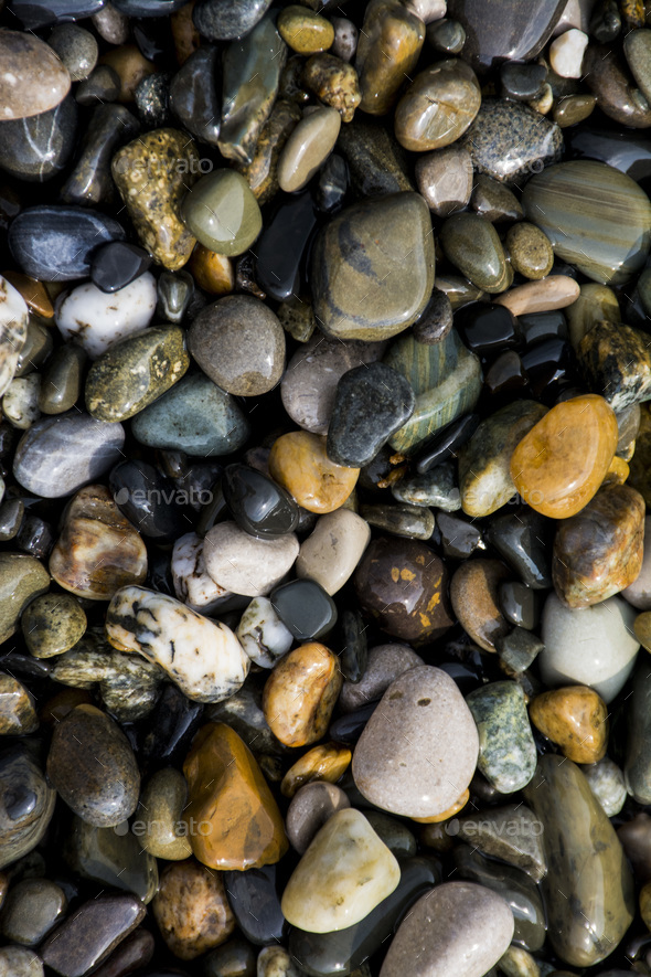 colorful pebbles on the beach - Stock Photo - Images