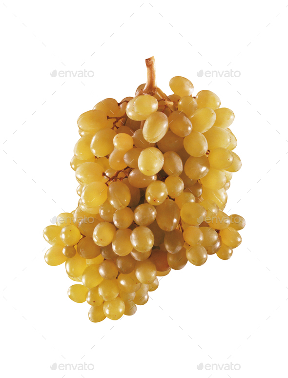 grape isolated on white background - Stock Photo - Images