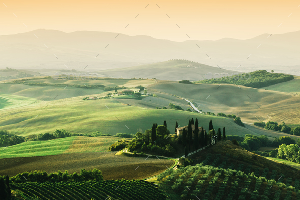 Tuscany landscape at sunrise. Tuscan farm house, vineyard, hills. - Stock Photo - Images