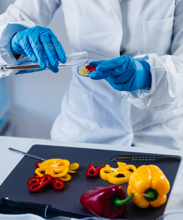 Quality control food safety inspector working with vegetables in - Stock Photo - Images
