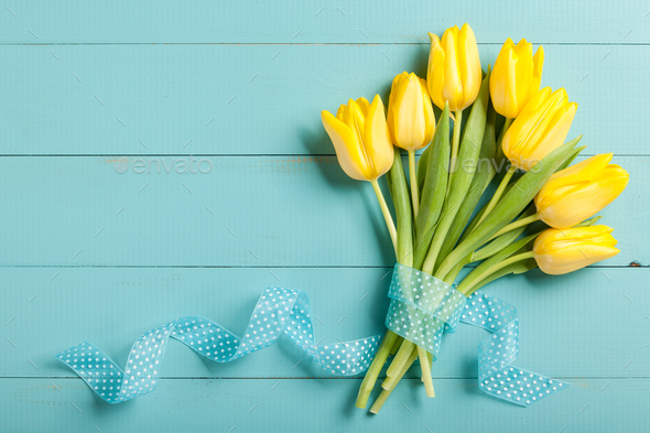 Yellow tulips on blue wooden background - Stock Photo - Images
