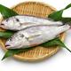 croaker fish - PhotoDune Item for Sale