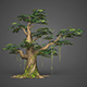 Game Ready Low Poly Tree 11 - 3DOcean Item for Sale