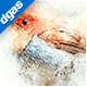 WaterArt - Photoshop Action - GraphicRiver Item for Sale
