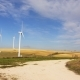 Wind Turbines in the Open Field  - VideoHive Item for Sale