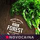 Rain Forest A4 & US Letter Bifold Menu - GraphicRiver Item for Sale