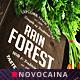 Rain Forest A4 & US Letter Trifold Menu - GraphicRiver Item for Sale