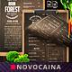 Rain Forest A4 & US Letter Single Page Menu - GraphicRiver Item for Sale