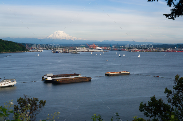 Sailboat Regatta Commencement Bay Port of Tacoma Mt Rainier - Stock Photo - Images