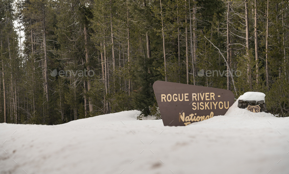 Winter Woods Rogue River Siskiyou National Forest Welcome Sign - Stock Photo - Images