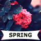 25 Spring Photoshop Actions