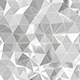 White Polygonal Background