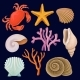 Underwater Sea Creatures Set