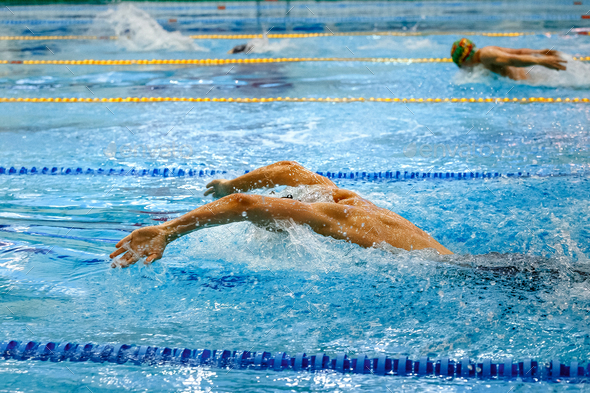 swimming competition - Stock Photo - Images