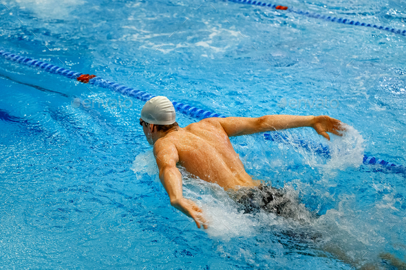 back male swimmer - Stock Photo - Images