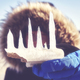 Close up picture of icicles held by a woman on a beach. - PhotoDune Item for Sale