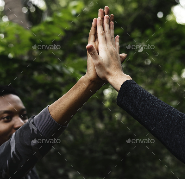 High five in the forest - Stock Photo - Images