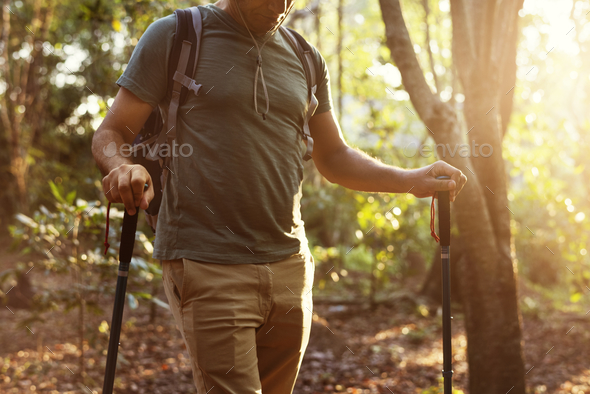 Man trekking into the forest - Stock Photo - Images