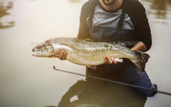 Man caught salmon fish - Stock Photo - Images
