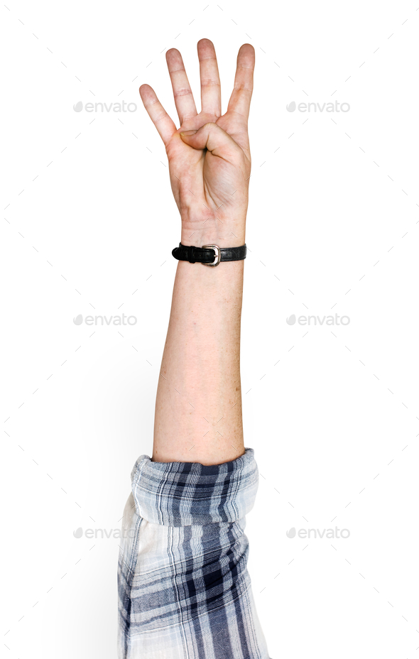Hand holding variation of object - Stock Photo - Images