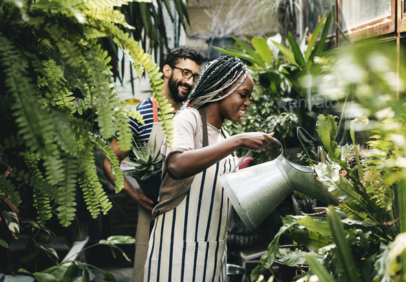 Couple taking care of the plants - Stock Photo - Images