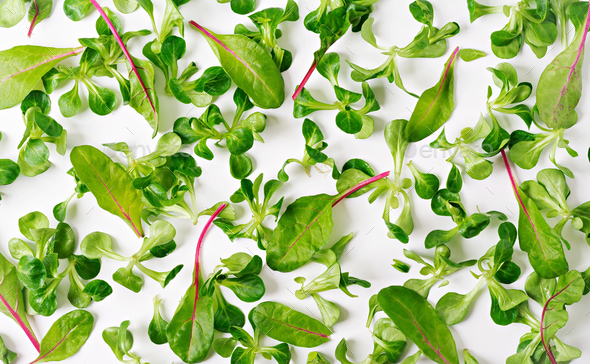 Salad leaves Valerianella on white background. View from above. - Stock Photo - Images