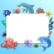 Set of Marine Animals Colorful on White - GraphicRiver Item for Sale