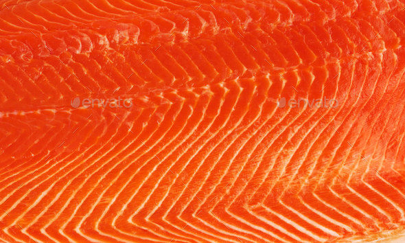 fresh salmon fillet background - Stock Photo - Images